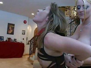 female-dominant S