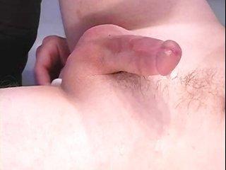Prostate manipulation